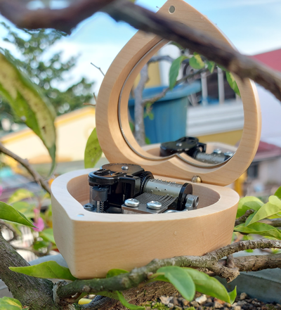 Automatic Music Box by Boxedtune