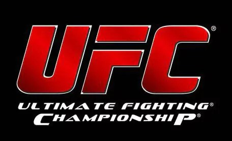 UFC on FX 7 - Video Replay.