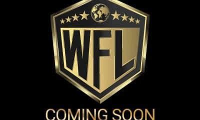 World Fighting league