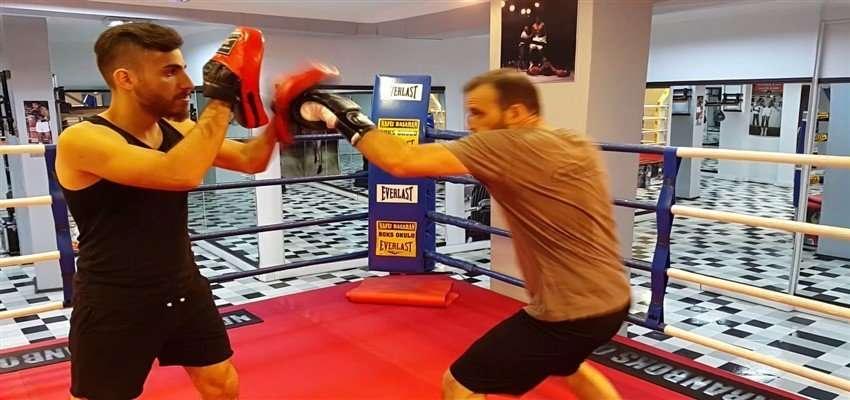 Beginner Boxer workout