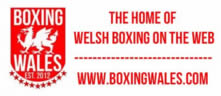 boxingwales-logo