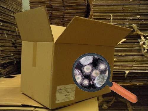 caja de cartón usada con moho