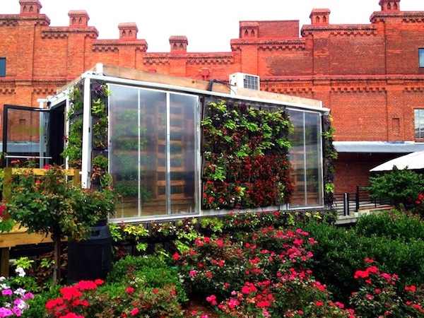 sustainable, low-cost container farm and market