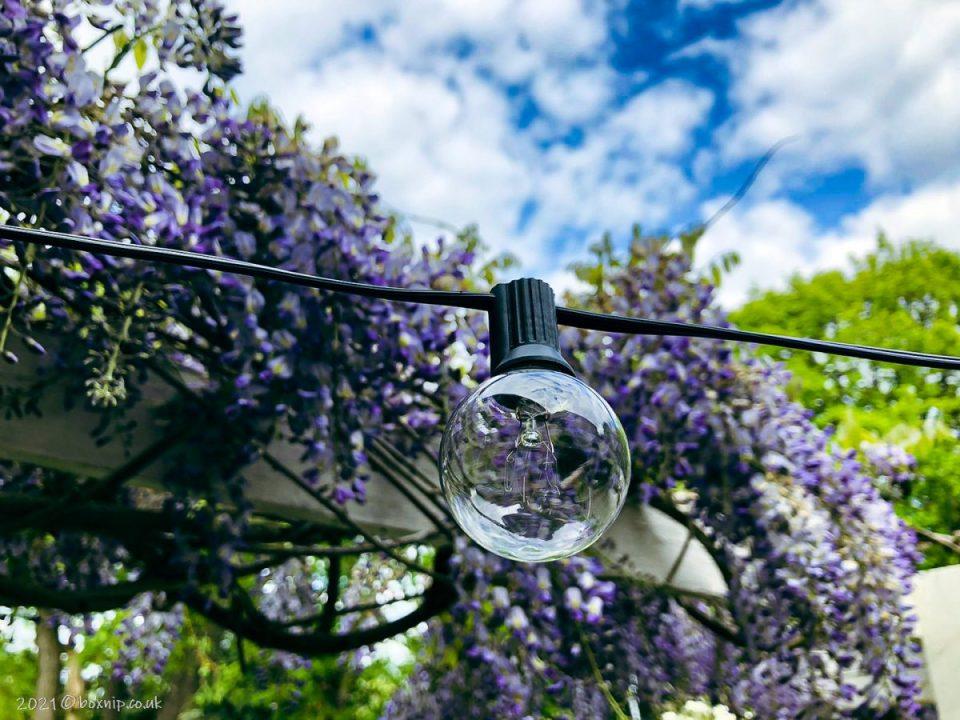 Elegear Outdoor Garden Lights