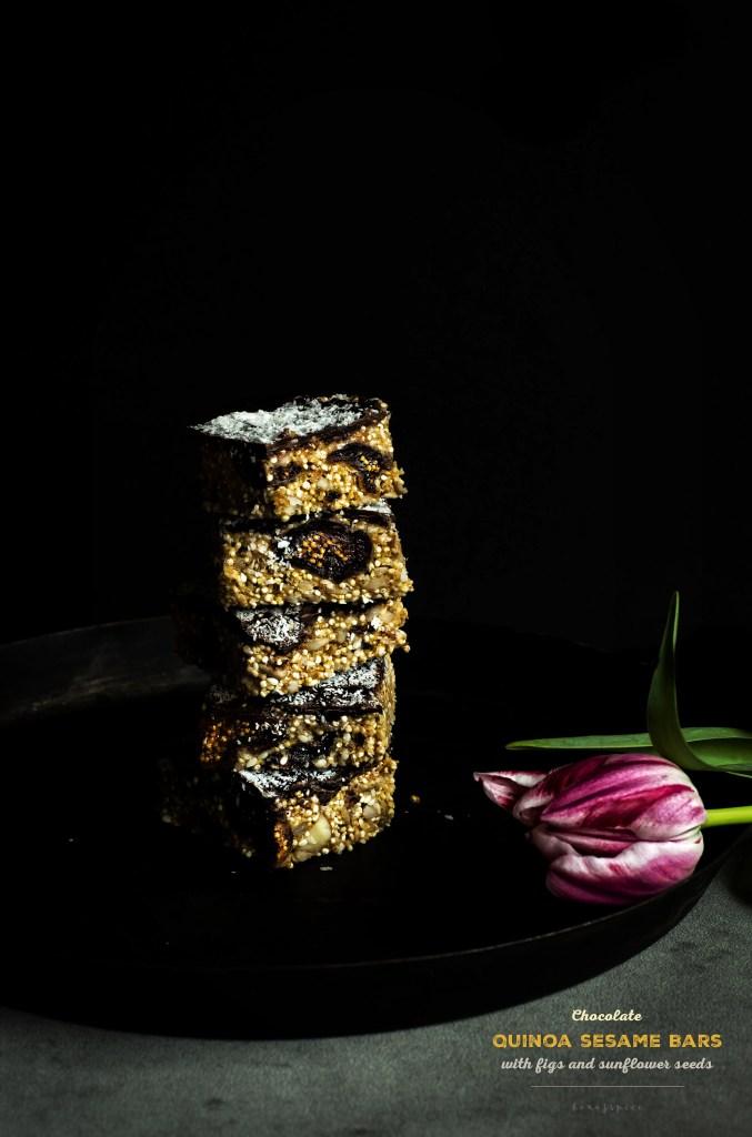 Chocolade Quinoa Sesam Bars + A Giveaway