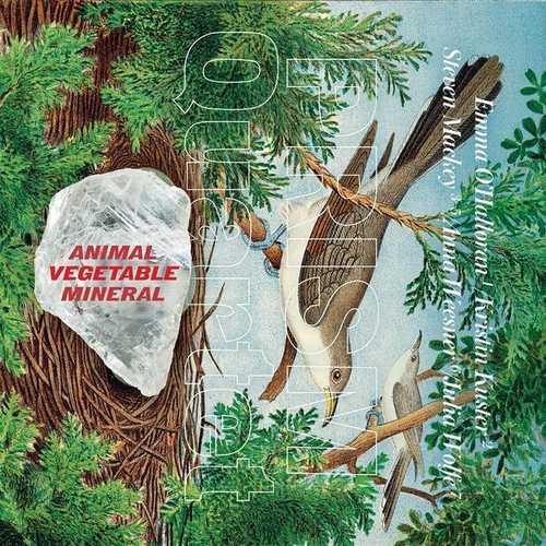 Prism Quartet: Animal, Vegetable, Mineral (24/48 FLAC)