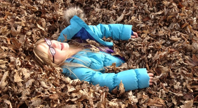 A serious leaf pile