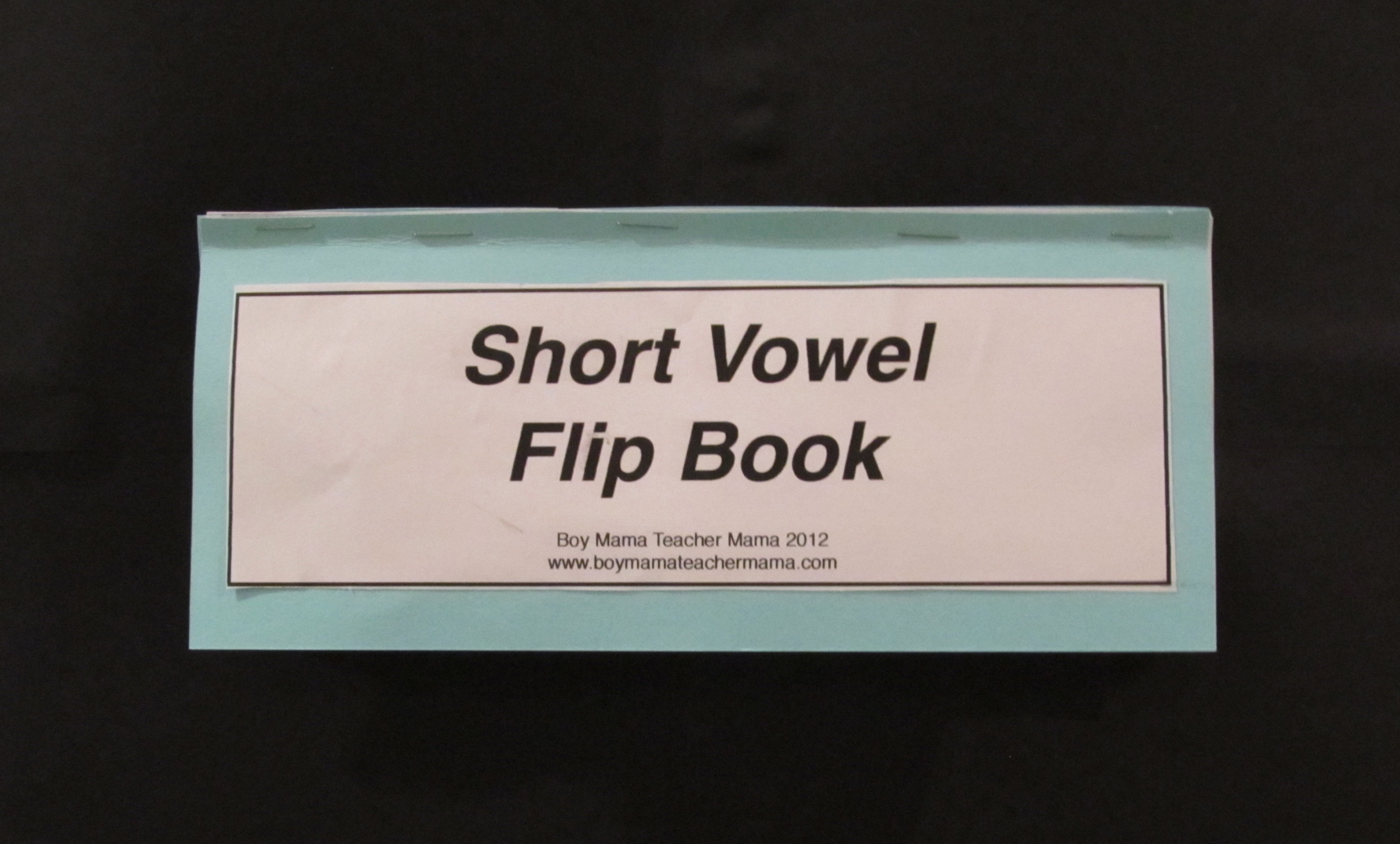 Vowel Flip Book Template