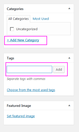 How to add category and tag in new WordPress post