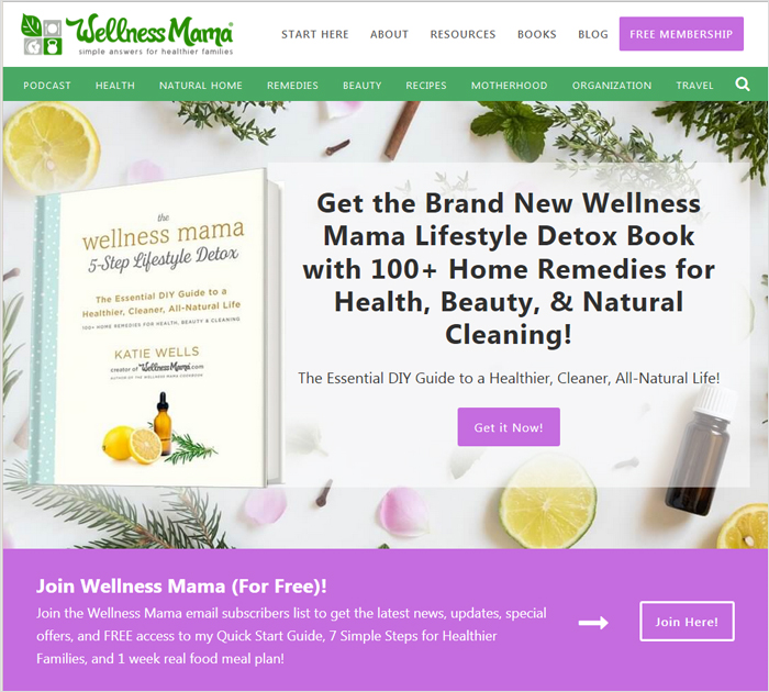 Wellness Mama - The best blogs in DIY category site screen shot