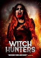 witch-hunters-cover