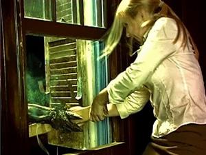 demon resurrection window fight