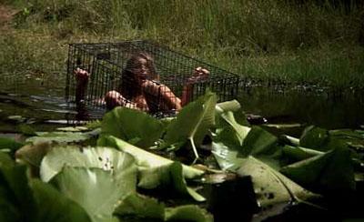creeper cage