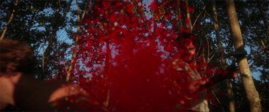 dark forest splat