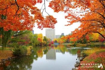 北海道|銀杏、紅葉、菖蒲池,在中島公園邂逅絕美秋意