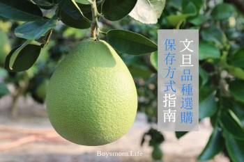 2021全省伯麻豆文旦預購中|柚子品種選購及保存方式完全指南