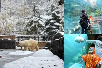 北海道旭川 親子最愛旭山動物園,園區坡道多冬季易積雪記得想備案
