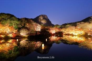 九州佐賀 武雄御船山樂園紅葉祭:火紅楓葉越夜越美麗