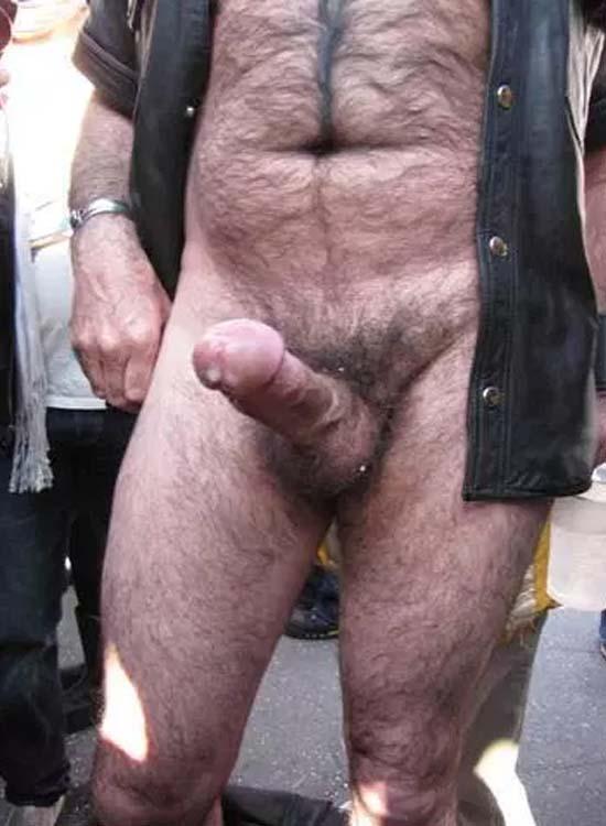 gordo peludo pau cabeçudo pentelhudo
