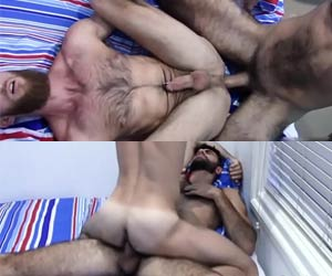 Pentelhudo esbagaçando o macho barbudo