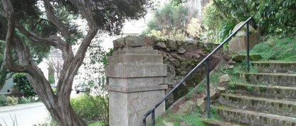 The stair post on Graystone, under an old tea tree (Leptospermum).