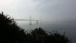 SF is hiding in the fog on the other side of the western span of the Bay Bridge.