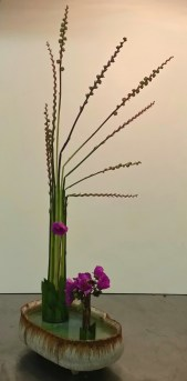 """My """"Straight Lines Freestyle"""" arrangement from Ikebana class. The stems are the spent flowers and growing seed pods from montbretia (Crocosmia) and the flowers are from a succulent Calendrinia spectabilis."""