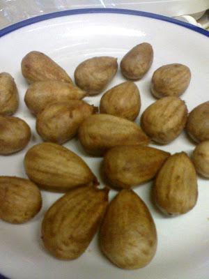 Bunya Nuts