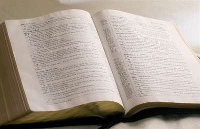 how to read the bible and understand it too