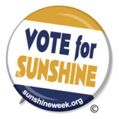 Image result for let the sun shine in on voting