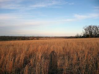 Missouri prairie photo by N8
