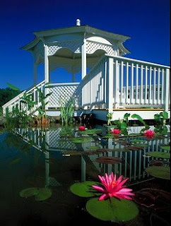 Gazebo on the Lily Garden