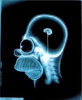 улучшить и укрепить память, психологическая консультация, советы психолога