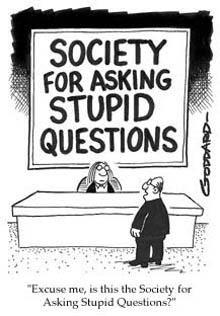 preguntas estupidas