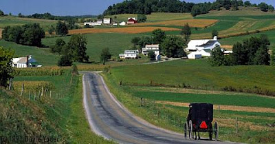 Amish Horse & Buggy in Ohio