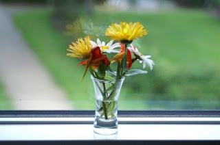 Blomster til ombudsmandsinstitutionen i dagens anledning!