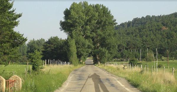 Camino de San Vicente