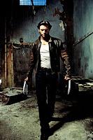 Wolverine in 2009