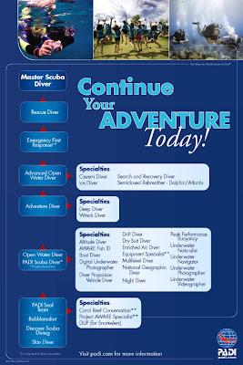 PADI continuing education flow chart poster