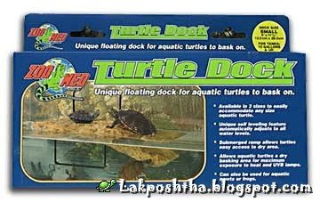 لنگرگاه لاک پشت Turtle Dock