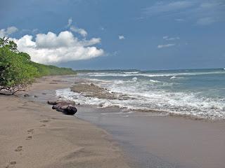 Erica Ridley in Costa Rica: Beach Playa Langosta y Playa Tamarindo