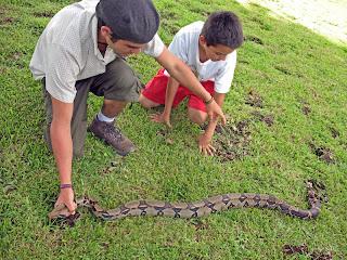 Erica Ridley in Costa Rica: Boa Constrictor