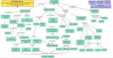 mappa su soluzioni al bullismo