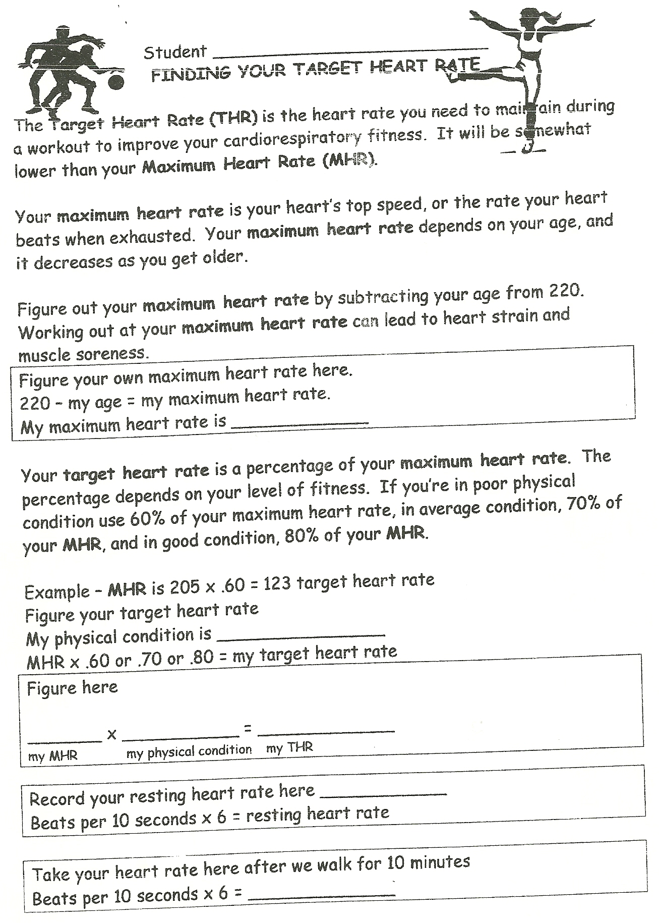 Heart Rate And Exercise