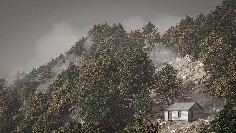 forest_blender_tree_vegetation