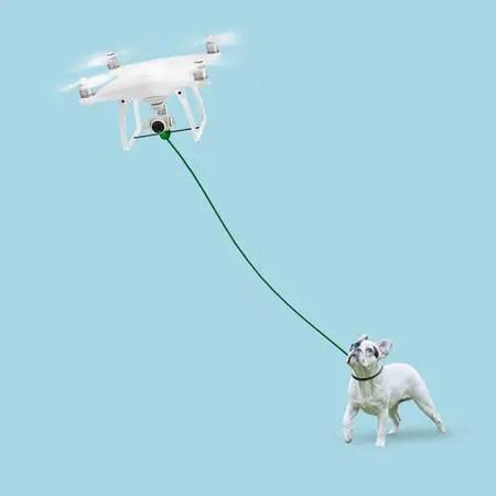 ドッグドローンが犬の散歩を代行
