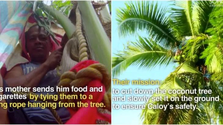 【実話】降りたら殺される…ヤシの木の上で3年生活してた男の救出作戦
