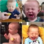 生まれて初めて○○食べてみたシリーズ!赤ちゃんたちの初体験動画まとめ
