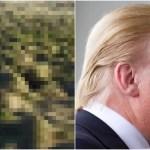 トランプ大統領のカツラ工場を発見!?1000の頭部が風になびく…