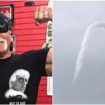 超激レア「空飛ぶハルク・ホーガンのヒゲ」出現!全米プロレスファン歓喜